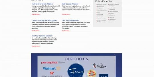 Ferox Strategies - feroxstrategies.com